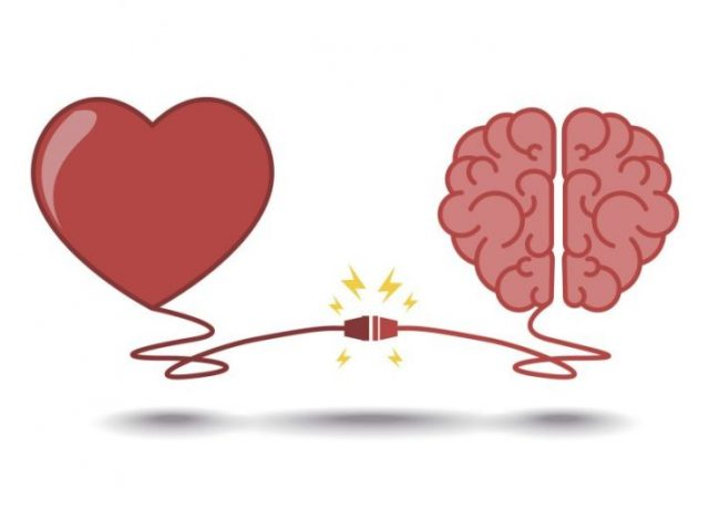 мозък, сърце