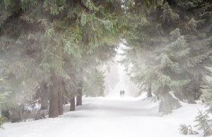 студ, сняг