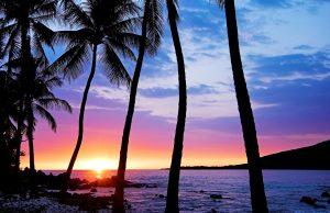 Хавай
