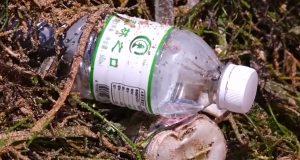 Пластмасовите отпадъци превземат океана