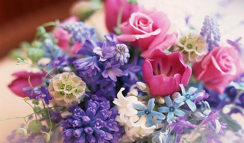 фестивали цветя