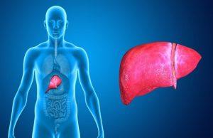 Този естественфилтър на човешкото тяло често страда заради недохранване, стрес и лошите ни навици, пише Zdrave.to. Тежест в дясната страна, горчивина в