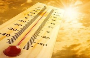 В горещо време, феновете на слънчевия загар са изложени на риск от слънчев удар. Но, за да се случи това, те трябва часове наред да не бъдат