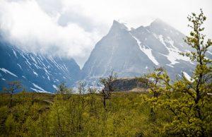 Kebneuaise_mountain