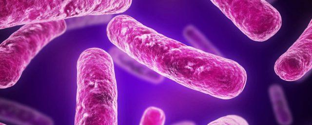 микроби