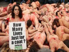 Активистите за правата на животните се разголиха