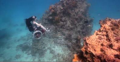 подводно шоу