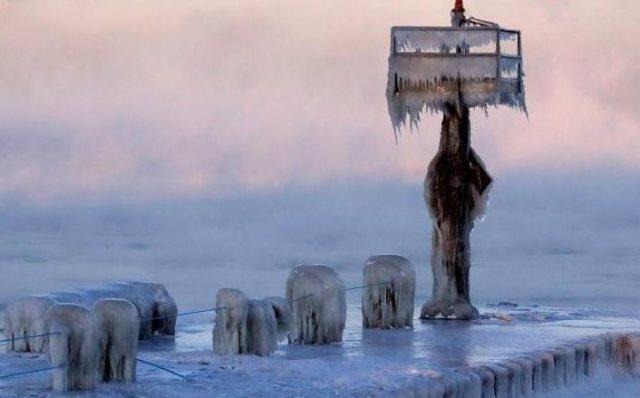 САЩ, студ