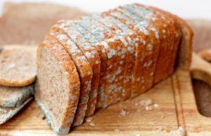 хляб, мухъл, хранителна добавка