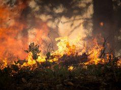 Мъж от Своге е обвинен за пожара над Реброво