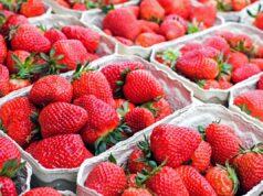 Ягодите намаляват риска от рак