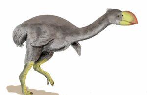 праисторическа птица