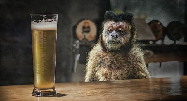 маймуна алкохол