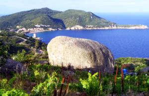 остров без коронавирус